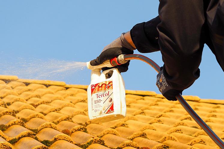 Tvättar tak från mossa och smuts