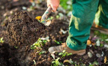 Gödsla hållbart för en sund trädgård
